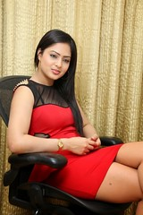 Indian Actress NIKESHA PATEL Hot Sexy Images Set-2  (23)