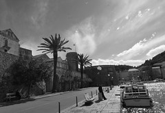 Korcula in wind