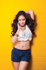 Indian Actress NIKESHA PATEL Hot Sexy Images Set-2  (58)
