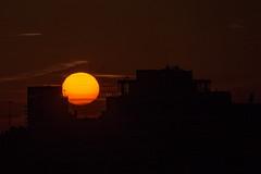 Sol de invierno.jpg