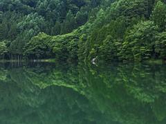 長野 大町 中綱湖