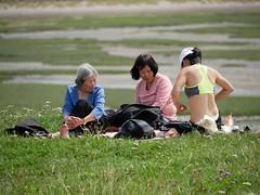 Generations (picnic)