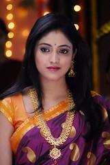 Indian Actress Haripriya Hot Sexy Images Set-2  (49)