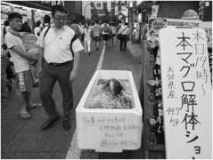 Town Snap - West Shinjuku 18:30 -