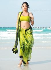 Indian Actress Haripriya Hot Sexy Images Set-1  (4)