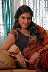 Indian Actress Haripriya Hot Sexy Images Set-2  (56)