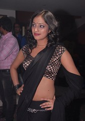 Indian Actress Haripriya Hot Sexy Images Set-1  (60)