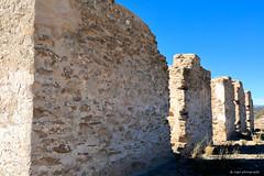 Fort Craig