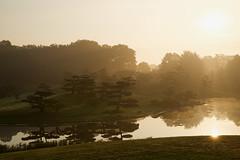 Japanese Garden in morning light