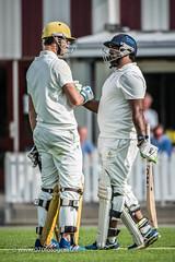 070fotograaf_2017082020170820_Cricket HCC1 - ACC 1_FVDL_Cricket_3488.jpg
