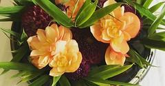 """Das Blumengesteck. Ist das Gesteck nicht schön? • <a style=""""font-size:0.8em;"""" href=""""http://www.flickr.com/photos/42554185@N00/36337786503/"""" target=""""_blank"""">View on Flickr</a>"""