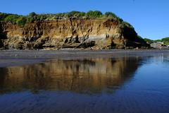 Reflections at Back Beach