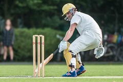 070fotograaf_2017082020170820_Cricket HCC1 - ACC 1_FVDL_Cricket_3663.jpg
