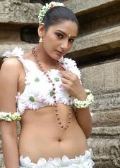 Indian Actress Ragini Dwivedi  Images Set-1   (88)