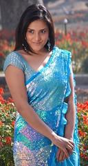 Indian Actress Ramya Hot Sexy Images Set-1 (51)