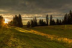 Sonnenaufgang auf dem Kühberg