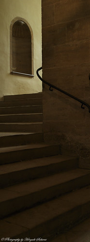 Staircase; Montacute House / National Trust