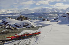 A winter kayaking trip in Ullsfjorden