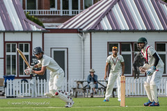 070fotograaf_2017082020170820_Cricket HCC1 - ACC 1_FVDL_Cricket_3838.jpg