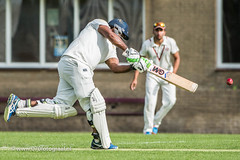 070fotograaf_2017082020170820_Cricket HCC1 - ACC 1_FVDL_Cricket_3502.jpg