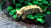 The World's Best Photos of lego and leopard - Flickr Hive Mind