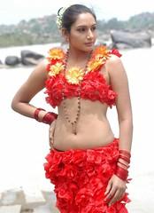 Indian Actress Ragini Dwivedi  Images Set-1   (91)