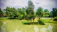 https://foursquare.com/v/paya-indah-wetlands/4cddf128df986ea8f3ddd816 #travel #holiday #travelMalaysia #holidayMalaysia #Malaysia #garden #green #旅行 #度假 #马来西亚度假 #马来西亚旅行 #马来西亚 #Asia #亚洲 #公园 #绿色 #grass #tree #草 #树 #Resort #度假村 #selangor #dengkil