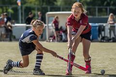 Hockeyshoot20170902_Wapenschouw hdm - Klein Zwitserland_FVDL__6301_20170902.jpg