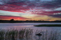Evening in Pyhtää