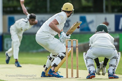 070fotograaf_2017082020170820_Cricket HCC1 - ACC 1_FVDL_Cricket_3705.jpg