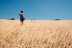 August: Harvest or holiday?