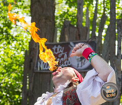 Michigan Renaissance Festival 2017 Revisited Saturday 31