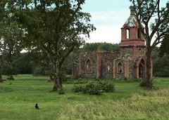 Black Cat & A Church