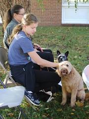 Pet Blessing 2017 V Wells