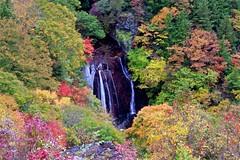 Water Fall in Autumn