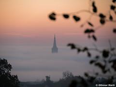 Ulmer Münsterturm über dem Nebel