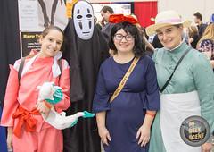 Grand Rapids Comic Con 2017 Part 2 27