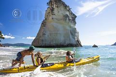 NZ17_140wright