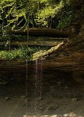 "Deb Putman - Trickling Tinker Falls <a style=""margin-left:10px; font-size:0.8em;"" href=""http://www.flickr.com/photos/9089158@N06/23537641308/"" target=""_blank"">@flickr</a>"