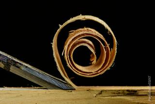MacroMondays Spiral Wood Shaving