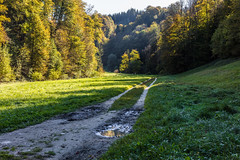 Mutzbachtal