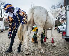 070fotograaf_20171125_Intocht Sinterklaas_FVDL_Evenement_4546.jpg