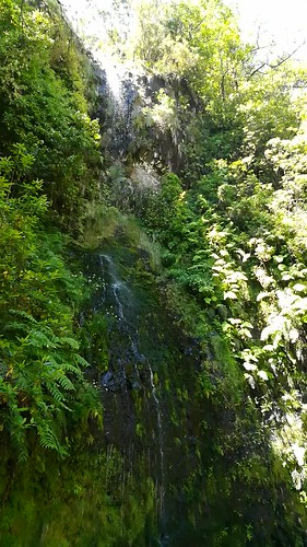 """Madeira flowing water • <a style=""""font-size:0.8em;"""" href=""""http://www.flickr.com/photos/160223425@N04/38784038442/"""" target=""""_blank"""">View on Flickr</a>"""