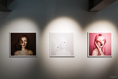 Exhibition PhotoBrussels Festival 2017 (Hangart.Art)