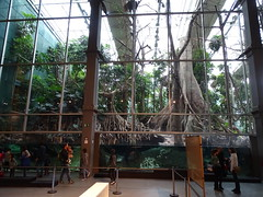 """Science Museum CosmoCaixa Barcelona • <a style=""""font-size:0.8em;"""" href=""""http://www.flickr.com/photos/160223425@N04/24934428648/"""" target=""""_blank"""">View on Flickr</a>"""