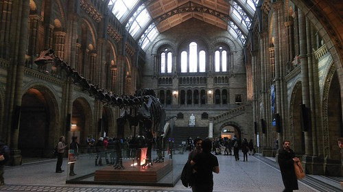 """Natural History Museum London • <a style=""""font-size:0.8em;"""" href=""""http://www.flickr.com/photos/160223425@N04/24029738137/"""" target=""""_blank"""">View on Flickr</a>"""