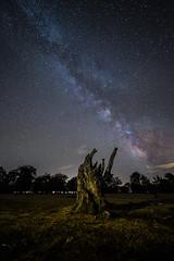 Observador estelar / stars observer´s