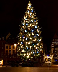 Sapin de Noel - Strasbourg