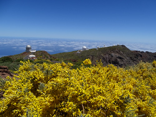 "La Palma Telescop • <a style=""font-size:0.8em;"" href=""http://www.flickr.com/photos/160223425@N04/37968246275/"" target=""_blank"">View on Flickr</a>"