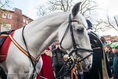070fotograaf_20171125_Intocht Sinterklaas_FVDL_Evenement_5041.jpg
